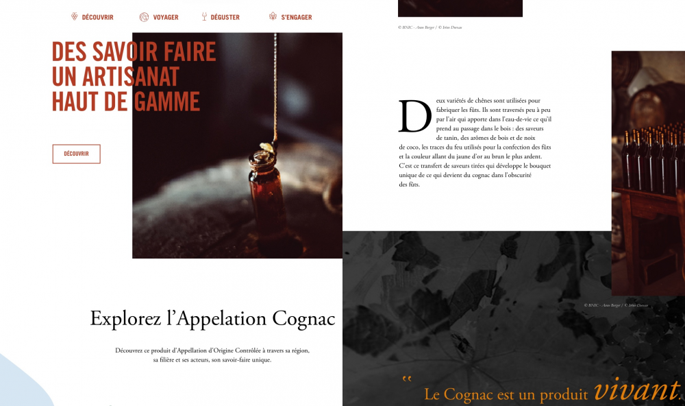 CONTENU EDITORIAL - BUREAU NATIONAL INTERPROFESSIONNEL DU COGNAC
